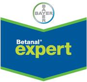 Высокоэффективный послевсходовый гербицид Бетанал®