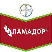 продам протравитель Ламадор®