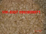 семена тыквы.арбуза, дыни; оборудование для сушки семян, тыквоуборочный к