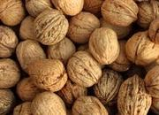 предлагаем семена тыквы орех грецкий фасоль