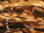 Дорого Покупаю Волосы