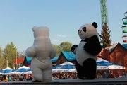 Пневмороботы на праздник,  Панда,  Винни Пух на свадьбу