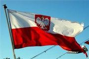 виза Польская (рабочая )