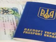 Получение визы - рабочая,  туристическая,  шенген