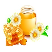 Скупаю мед