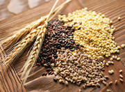 Закупаем дорого пшеницу,  кукурузу,  рапс,  подсолнечник