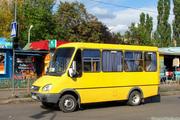Водитель маршрутного такси категории