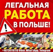 Официальная работа в Польше для мужчин и женщин.